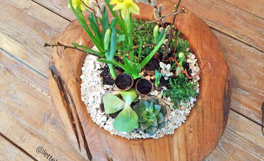 Liebevoll gepflanzte Osterdeko – DIY